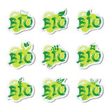 Eco Friendly Organic Natural Bio Product Web Icon Set Green Logo Collection Stock Images