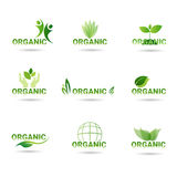 Eco Friendly Organic Natural Product Web Icon Set Green Logo Collection. Flat Vector Illustration Royalty Free Stock Photo