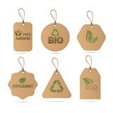 Eco Friendly Organic Natural Product Web Icon Tag Set Logo. Flat Vector Illustration Royalty Free Stock Image