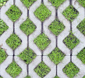 Eco-friendly parking. Of concrete cells and turf grass Royalty Free Stock Photos