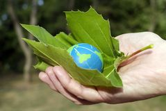 Eco friendly people. Environmental Conservation Global Concept:  Hands holding green leaf protecting the environmentally friendly earth Royalty Free Stock Images
