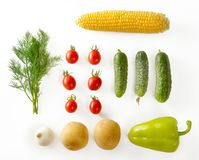 Eco-friendly products from garden. Carrots, onions, potatoes, di Stock Image