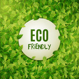 Eco friendly round banner, green leaves, vector illustration Stock Images
