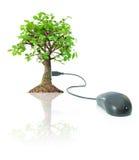 Eco friendly technology Royalty Free Stock Photos