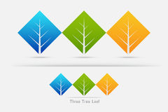 Eco friendly ,three tree leaf concept. On white background. Vector illustration Royalty Free Stock Photo