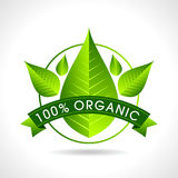 Eco friendly website icon, Stock Photography