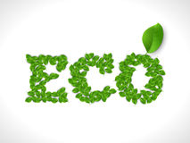 Eco friendly word FRESH made of green vector leafs. Eco text concept Stock Image