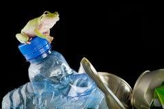 Eco frog Royalty Free Stock Photos