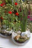 Eco gardening Royalty Free Stock Photos