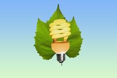 Eco Glühlampe beleuchtete auf einem grünen Blatt Stockfotografie