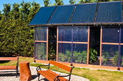 Eco glass house with solar panels. A unique, ecological or eco glass house with tomatoes and solar panels mounted on its roof. Healthy home grown food concept Stock Photos