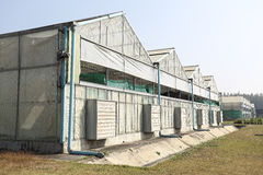 Eco grönt hus för jordbruk Fotografering för Bildbyråer