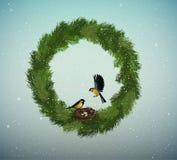 Eco-Grün-Feiertagsidee, Kranz von Weihnachtsbaumasten mit Nest und zwei Vögel nach innen, süßes Haus, schützen den Wald stock abbildung