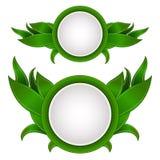 Eco-Grünaufkleber Stockbilder