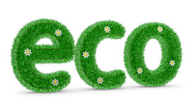 ECO with grass and flowers Stock Photo