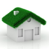 Eco grass house Stock Photo