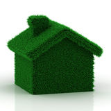 Eco grass house Stock Images