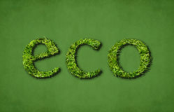 Eco (green). Caption eco (ecological) on green background Royalty Free Stock Photography
