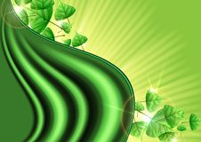 Eco Green Background With Leaves. Vector Illustration. Eps 10 Stock Photo