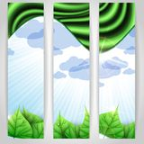 Eco Green Background With Leaves. Vector Illustration. Eps 10 royalty free illustration