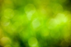 Eco green bokeh blur background Royalty Free Stock Photography
