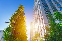 Free Eco Green City Office Building Outdoor Stock Photo - 118488200