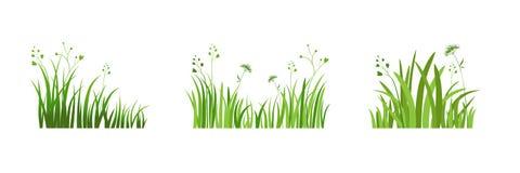 Eco green element Stock Photo