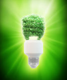 Eco and green energy bulb. Eco and green energy concept illustration - leaf covered bulb Royalty Free Stock Image