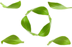 Eco green energy recycling Royalty Free Stock Image