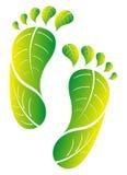 Eco green footprint. Footprint made from green leaves vector illustration