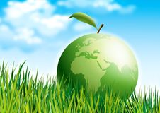 Eco green globe on grass Stock Photo