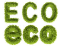 Eco with green grass Stock Images