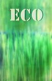 Eco green grass background Stock Image
