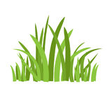 Eco green grass. Grass icon. Silhouette of plants for logo or sign royalty free illustration