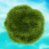 Eco Green Grass Sphere on Background Blue Sky Royalty Free Stock Photos