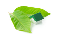 Eco green house. Miniature green house on leaf over white background Royalty Free Stock Images