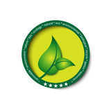 Eco green icon / button Royalty Free Stock Photo