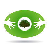 Eco green icon with hands and tree Stock Photo