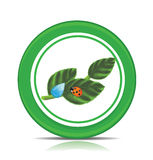 Eco green leaf icon isolated on white Stock Image