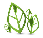 Eco green leaves Royalty Free Stock Image