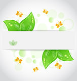 Eco green leaves with with butterfly. Illustration eco green leaves with with butterfly on white background - vector royalty free illustration