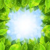 Eco green life Stock Photo