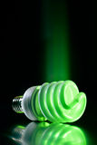 Eco green light bulb Royalty Free Stock Photos
