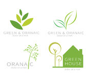 Eco groen blad Ecologie groen pictogram Stock Foto's
