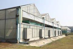 Eco Groen huis voor landbouw Stock Afbeelding