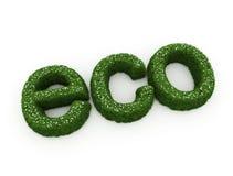 Eco groene tekst Stock Foto