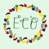 Eco hand dragen bokstäver som omges av frukt och grönsaker stock illustrationer