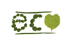 Eco headline. Made from pea and leaf Royalty Free Stock Photos
