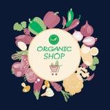 Eco Healthy Organic vegetarian food  background in flat illustra Royalty Free Stock Image