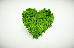 Eco heart Royalty Free Stock Photography